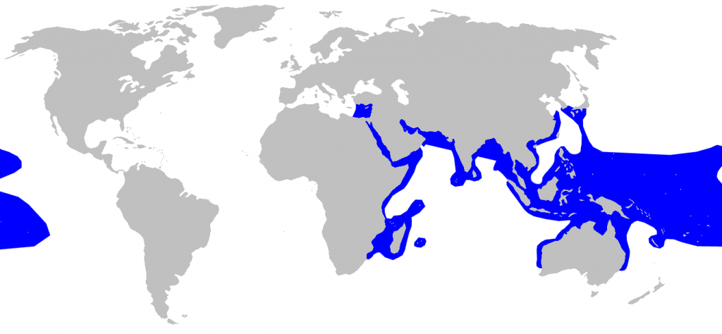 Distribution map of blacktip reef sharks